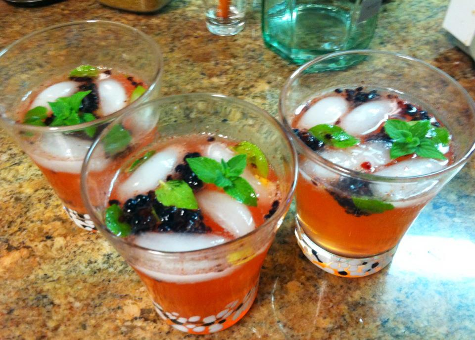 blackberry-lemon-gin-tonics